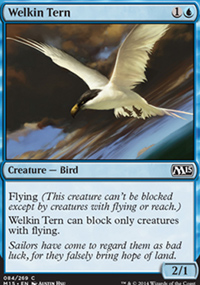 Welkin Tern - Magic 2015