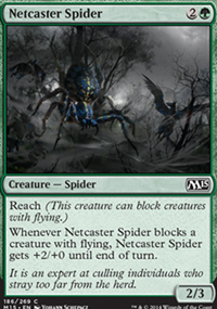 Netcaster Spider - Magic 2015