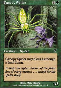 Canopy Spider - 7th Edition