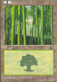 Forest - Asian Alternate Arts