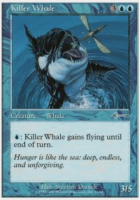Killer Whale - Beatdown