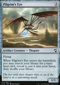 Pilgrim's Eye -