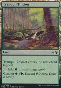 Tranquil Thicket - Duel Decks : Anthology