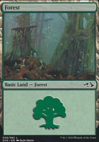 Forest 1 - Duel Decks : Anthology