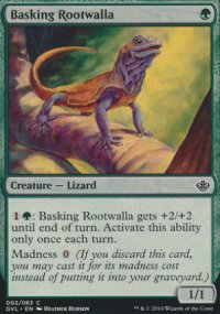 Basking Rootwalla - Duel Decks : Anthology