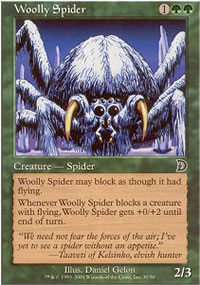 Woolly Spider - Deckmasters
