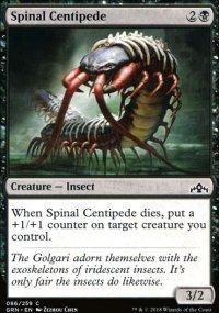 Spinal Centipede -