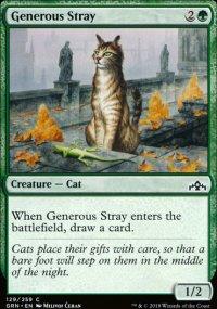 Generous Stray -