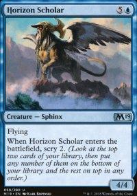 Horizon Scholar -