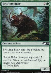 Bristling Boar -