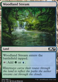 Woodland Stream -