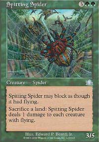 Spitting Spider - Prophecy