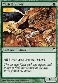 Muscle Sliver - Premium Deck Series: Slivers