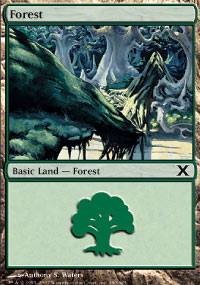 Forest 1 - 10th Edition