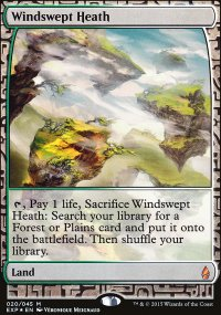 Windswept Heath - Zendikar Expeditions