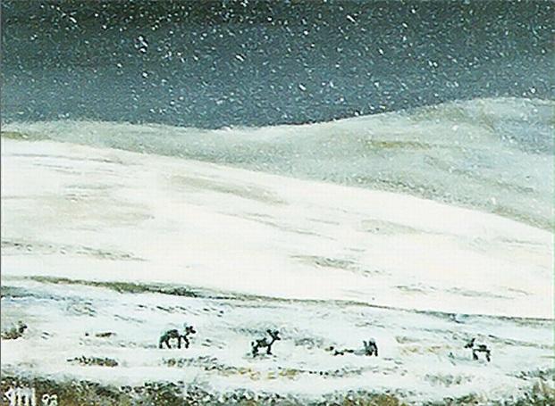 Tundra   Illustration by Jesper Myrfors