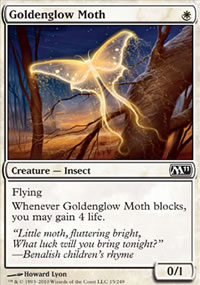 Goldenglow Moth - Magic 2011