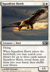 Squadron Hawk - Magic 2011