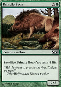 Brindle Boar - Magic 2012