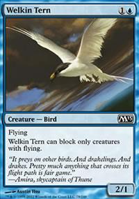 Welkin Tern - Magic 2013