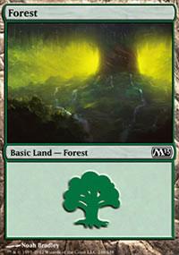 Forest 3 - Magic 2013