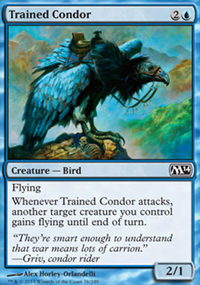 Trained Condor - Magic 2014