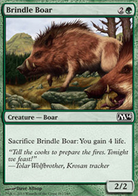 Brindle Boar - Magic 2014