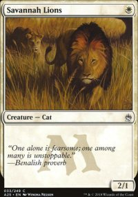 Savannah Lions - Masters 25