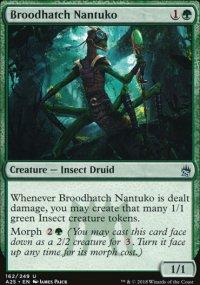 Broodhatch Nantuko - Masters 25