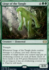 Liege of the Tangle -