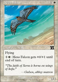 Mesa Falcon - 6th Edition