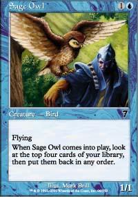 Sage Owl - 7th Edition
