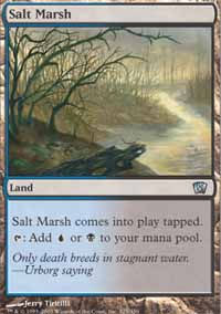 Salt Marsh - 8th Edition