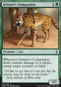 Initiate's Companion - Amonkhet