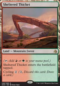 Sheltered Thicket - Amonkhet