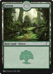 Forest - Arena Beginner Set