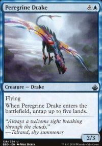Peregrine Drake -