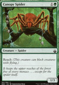Canopy Spider -