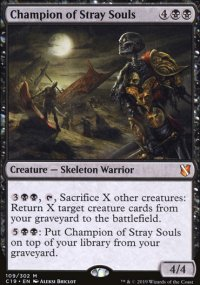 Champion of Stray Souls -
