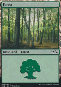 Forest 2 - Duel Decks : Anthology
