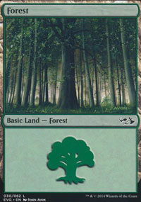 Forest 3 - Duel Decks : Anthology