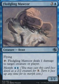 Fledgling Mawcor - Duel Decks : Anthology