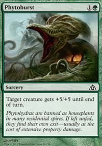 Phytoburst - Dragon's Maze