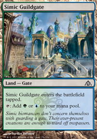 Simic Guildgate - Dragon's Maze