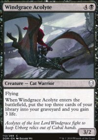 Windgrace Acolyte - Dominaria