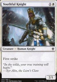 Youthful Knight -