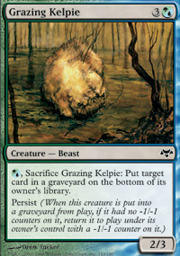 Grazing Kelpie - Eventide