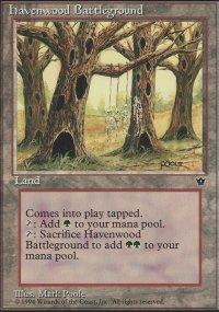 Havenwood Battleground - Fallen Empires