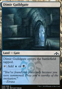 Dimir Guildgate 2 - Guilds of Ravnica