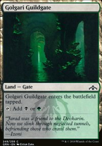 Golgari Guildgate 2 - Guilds of Ravnica